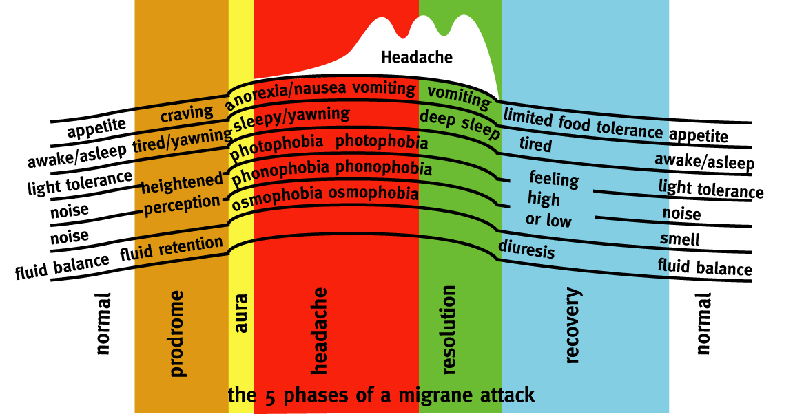 how many stages of migraine